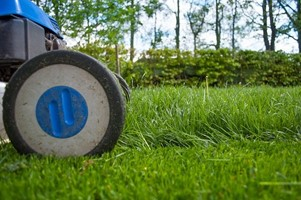 how to care for your new lawn